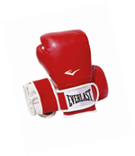 Everlast Boksehandsker junior